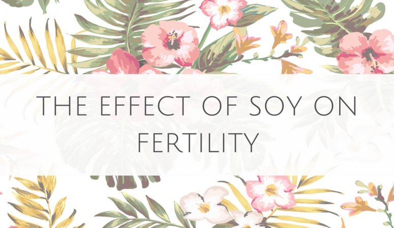 Effect of Soy on Fertility