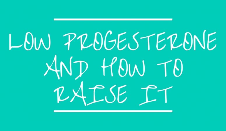 Low Progesterone and How to Raise It